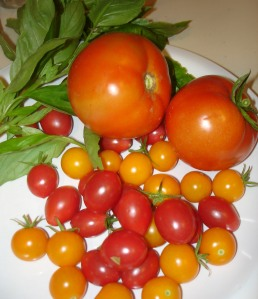 The tomatoes and basil I picked from our garden and used in the pasta.